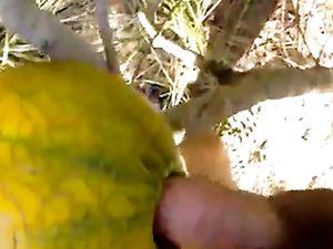 outdoor fun with melon